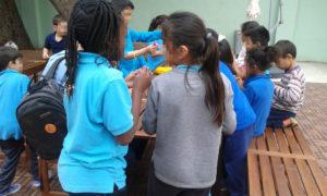 EducacionCompensatoria17